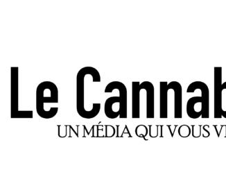 logo média fd blanc