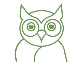 vignette Green Owl