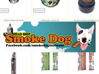 vignette smoke dog