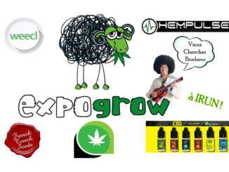 vignette LC Expogrow4