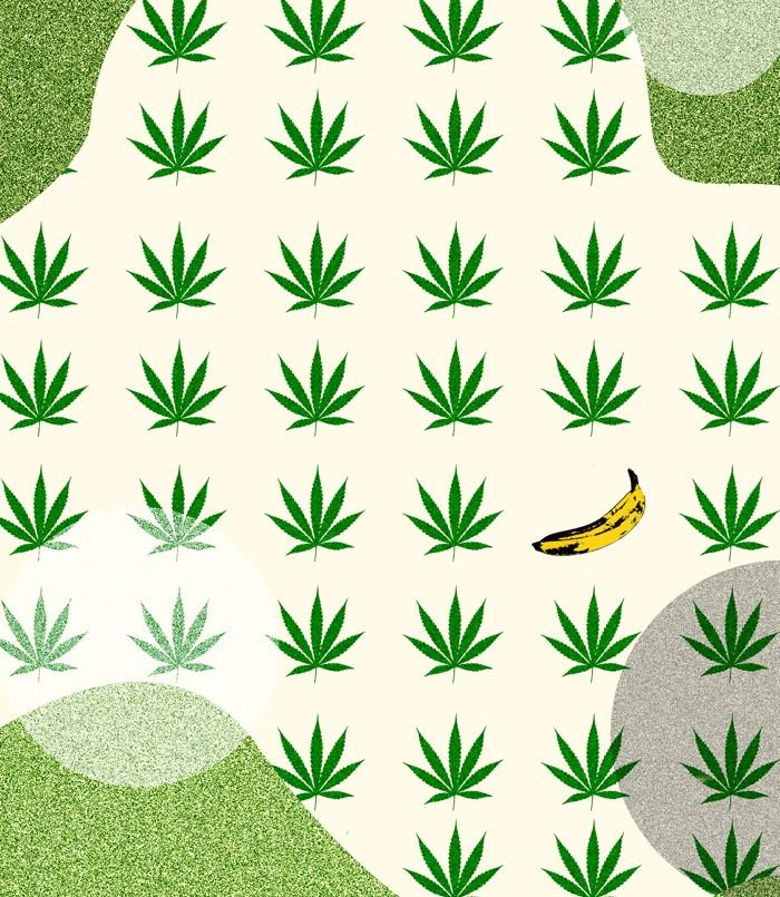 700x805 banana kush