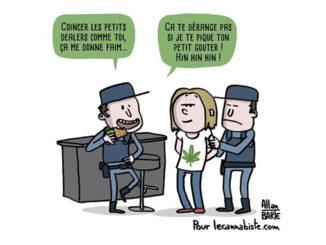 Allan Barte Le Cannabis1
