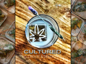 Cultured Create and destroy