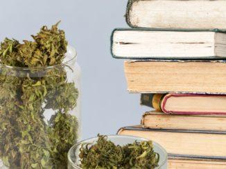 140425 roffman weed reads tease yobb5h