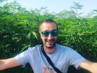 Niels Gagnaire Le Cannabiste