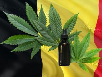 Le Cannabiste Pixabay Unsplash