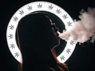 Le Cannabiste john caroro Unsplash