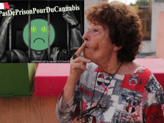Le Cannabiste Abuela Cannabis