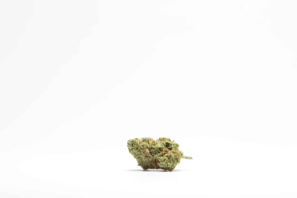 San Juan Strains – Clementine