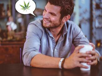 Le Cannabiste 10 conseils dealer Unsplash 1 e1576762163593
