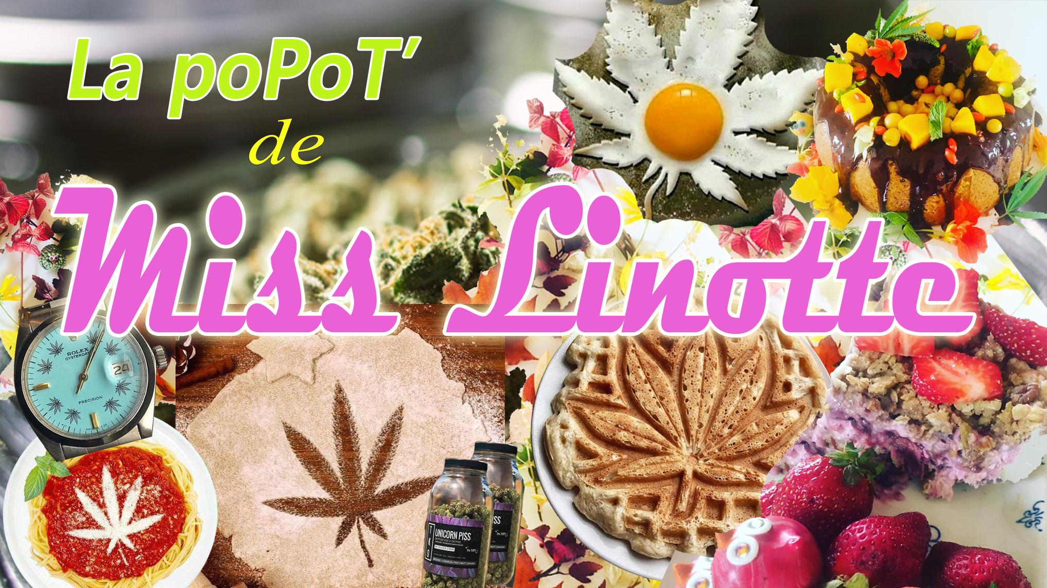 Le Cannabiste popot miss linotte