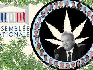 le cannabiste assemblee nationaleS