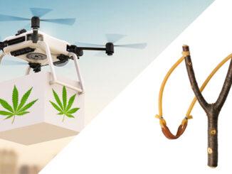 Le Cannabiste Livraison Cannabis par Drone
