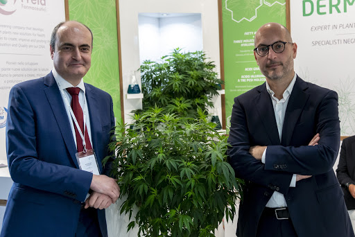 Dermogel Désinfectant Cannabis