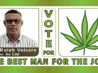 Le Cannabiste LCIS