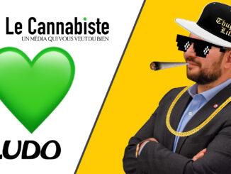 Le Cannabiste aime Ludo
