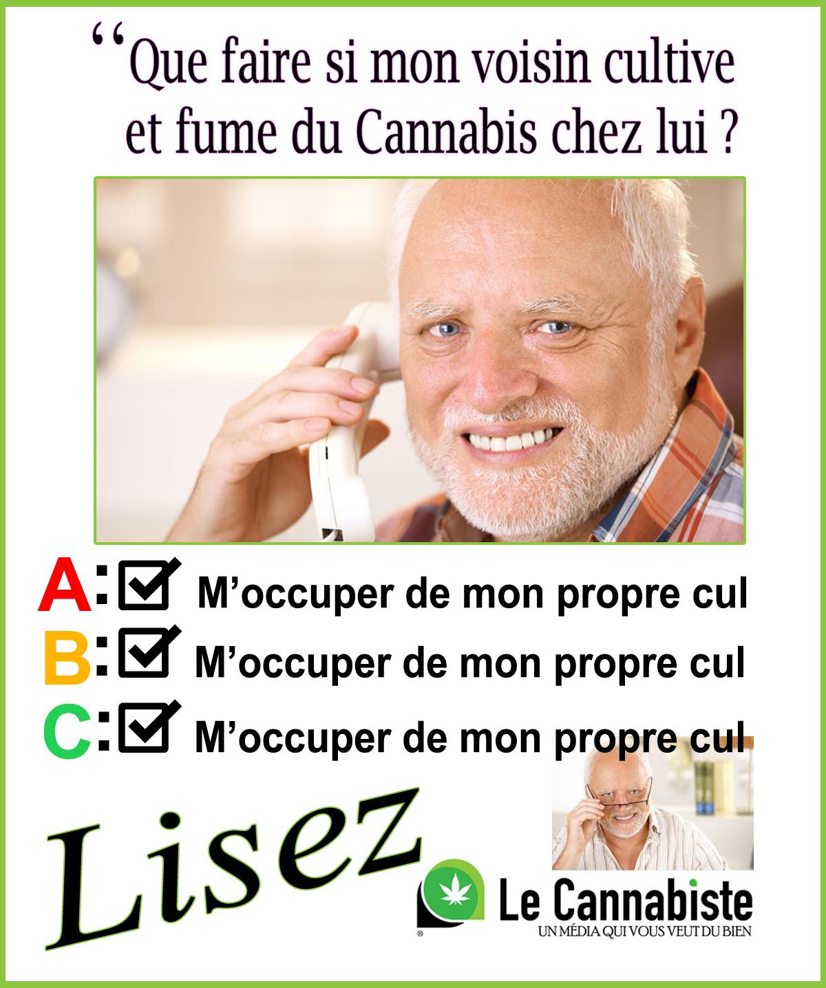 Le Cannabiste Delation