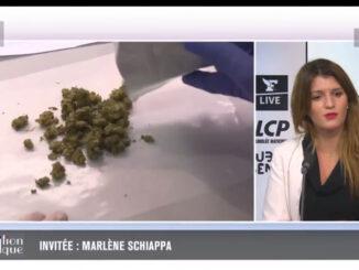 Le Cannabiste Schiappa Cannabis