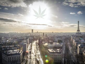 Le Cannabiste rob potvin @ unsplash