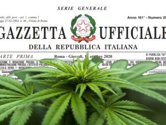 LeCannabiste CBD Italie