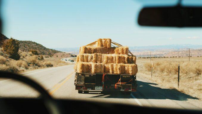 Le Cannabiste - Tombé du Camion