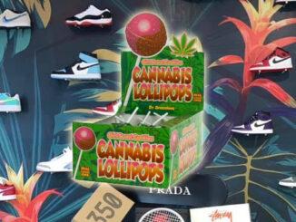 le cannabiste CBD mmonarque