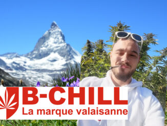 Le Cannabiste B Chill