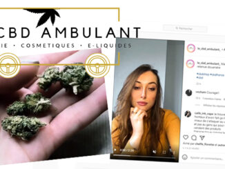 Le Cannabiste Le Cbd Ambulant