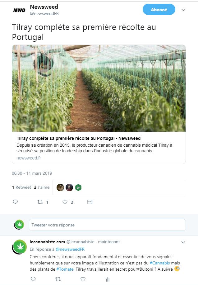 Newsweed Tomates Tweet