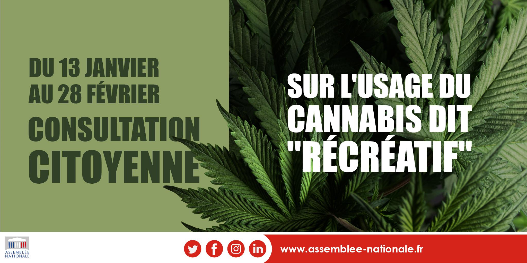 consultation-citoyenne-cannabis-récréatif