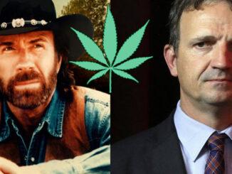 Le Cannabiste Chuck Norris François Michel Lambert