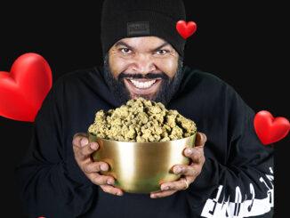 le cannabiste ice cube fryday kush