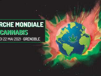 le cannabiste marche mondiale cannabis circ