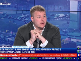 le cannabiste cbd bfmbusiness legal vign