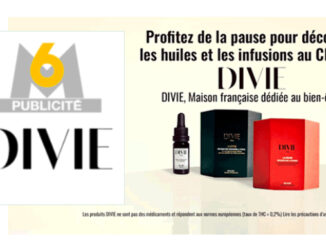 le cannabiste m6 cbd divie