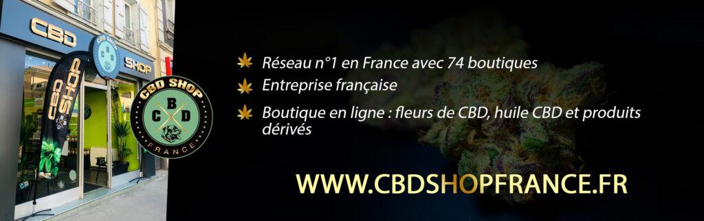 banniere cbd cannabiste