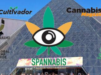 le cannabiste spannabis 2022