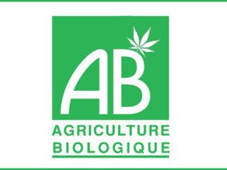 le cannabis chanvre cbd bio