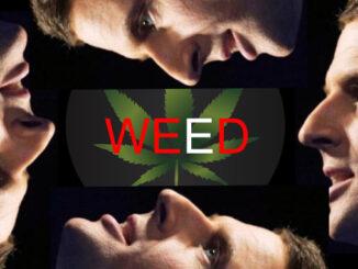 le cannabiste macron guerre drogues 1